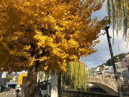 中島川の散歩おすすめ